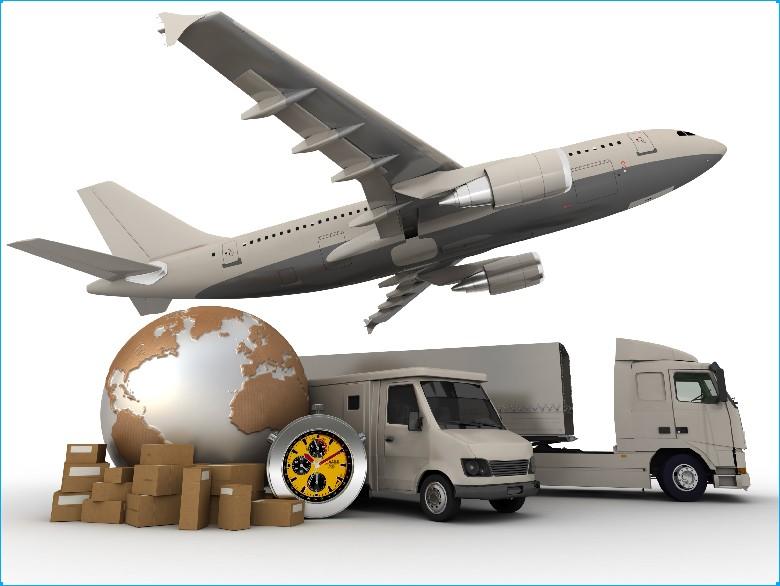 vien-dong-shipping-1