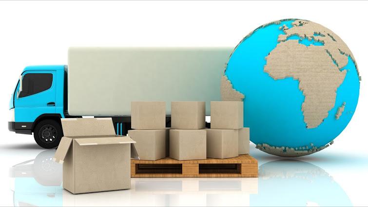 vien-dong-shipping
